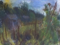 allotment-in-the-evening
